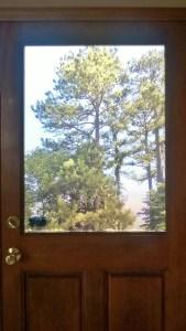 Single Window Door – After