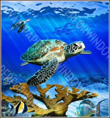 Underwater Sea Life Window Film